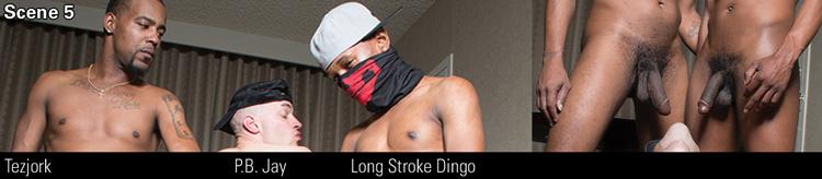 SCENE 5: Long Stroke Dingo & P.B. Jay & Tezjork Video Preview