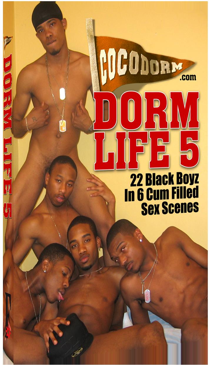 Dorm Life 5